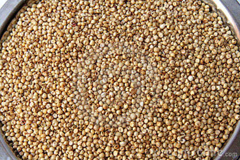 sorghum-grains-10262423