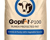 GopiFat-P100